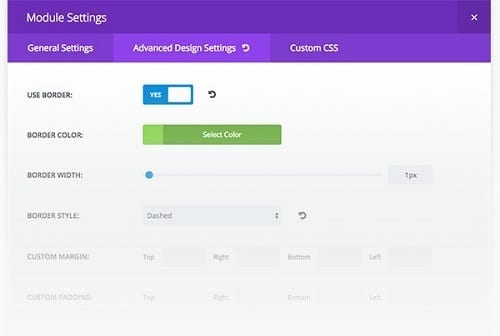An example advanced setting module screenshot from Divi 2.4