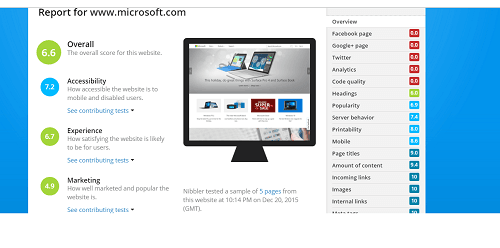 Nibbler Screenshot showing Microsoft.com